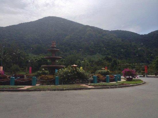 Linh Son Truong Tho pagoda : At the base of Ta Chu mountain (pagaoda at the top)
