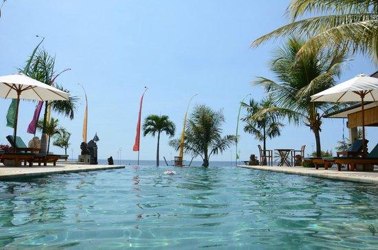 Kelapa Lovina Beach Villas Bar & Resto: La infinity pool