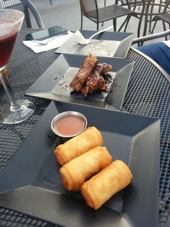 Ode to the Elephants: Plum Honey Ginger Ribs and Spring Rolls