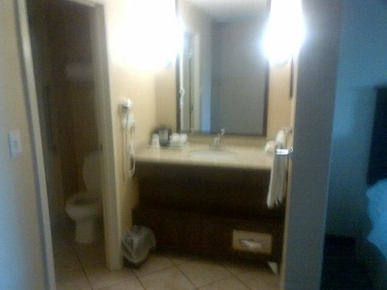 Holiday Inn Lethbridge: Bathroom area