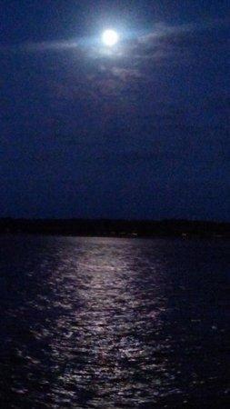 Vagabond Cruise: Romantic Moon