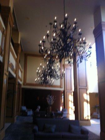 Hilton Arlington: Lobby