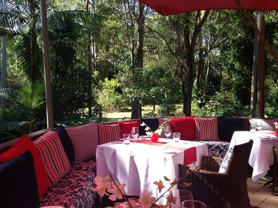 Songbirds Rainforest Retreat : Lunch in the forest