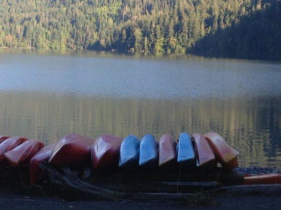 Lake Crescent Lodge Restaurant: Serenity