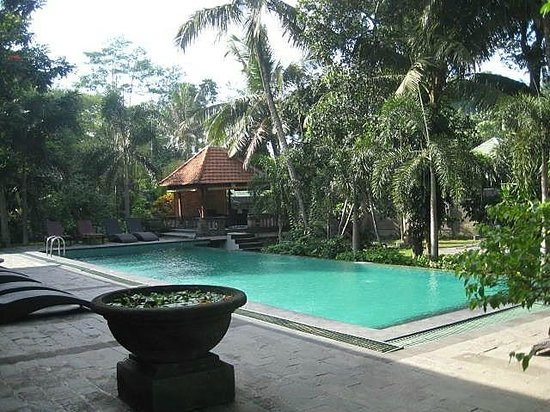 Champlung Sari Hotel: The pool
