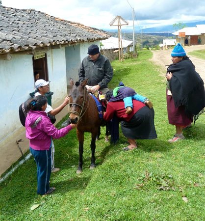 Sarcófagos de Karajía: Getting On the Horse