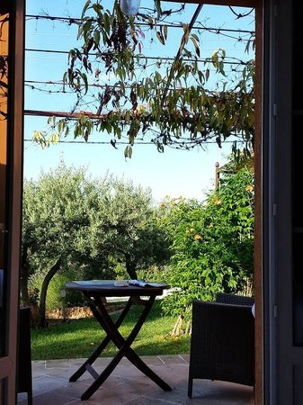 Mas de l'Olivette: View from one of the rooms