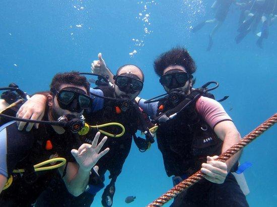 บับบา ไดวิ่ง ภูเก็ต: discover dive