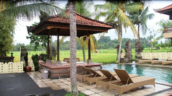 Green Field Hotel and Bungalows: Swimming pool. Relaxing morning