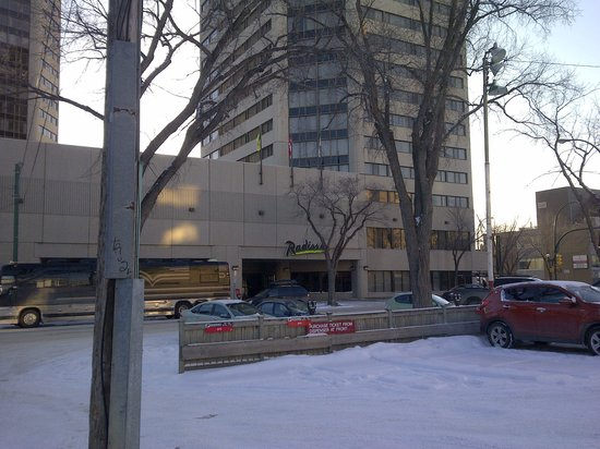Radisson Hotel Saskatoon: Great Hotel