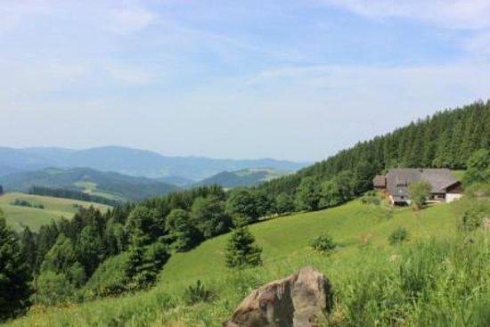 Ferienbauernhof - Kapfenmathishof