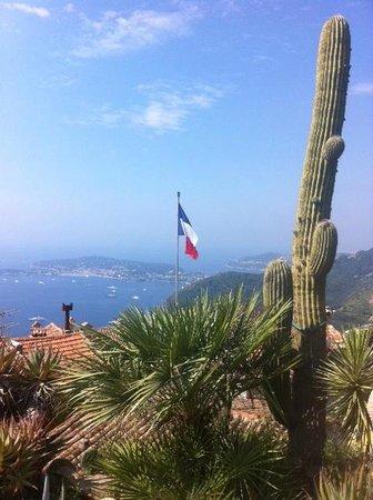 Views From Jardin D Eze Picture Of Le Jardin Exotique D Eze
