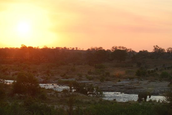 Crocodile Lodge: Sunset from the patio