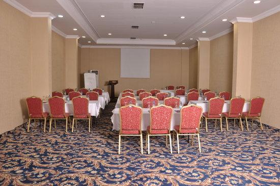 Anemon Ege Saglik: Ballroom
