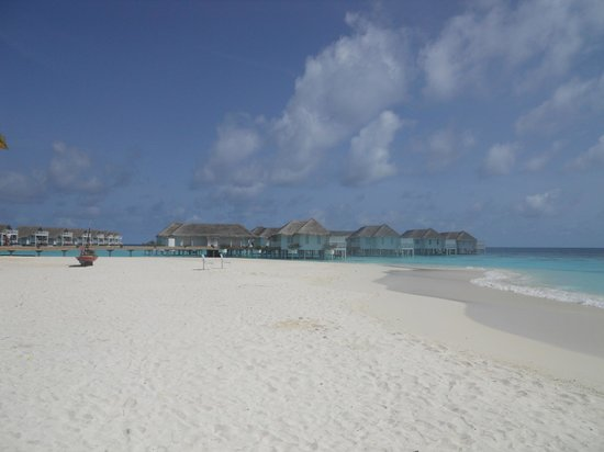 Centara Grand Island Resort & Spa Maldives : Plage vue depuis la Beach Suite 102