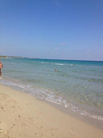 Baia dei Turchi: Spiaggia e mare dedicata al resort
