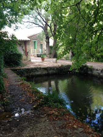 Domaine a L'Aise: The Old Roman Bath and a Source