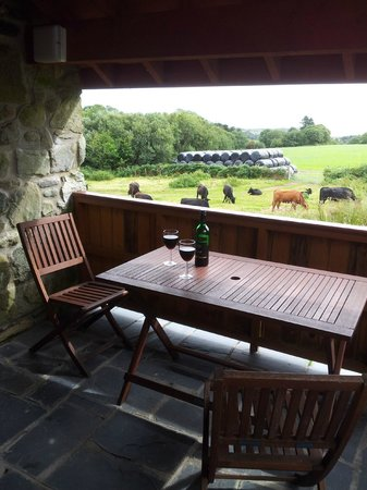Tyddyn Iolyn Farmhouse : View from our under cover patio