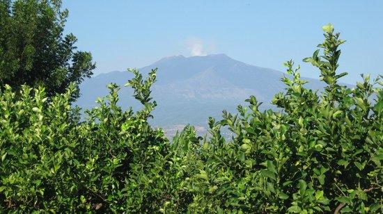 B&B Villa Maria Giovanna : vista dell'Etna
