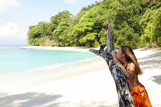 Barefoot at Havelock: Untouched Paradise