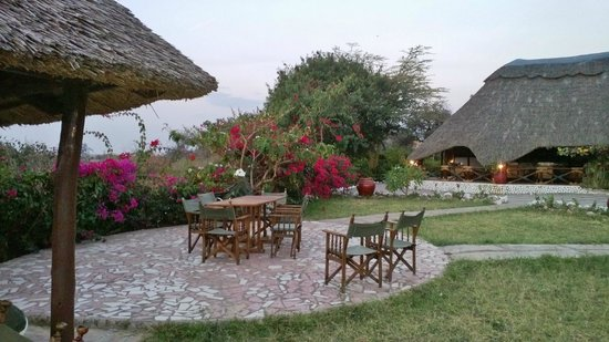 Manyara Wildlife Safari Camp: Spazio relax