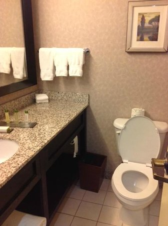 DoubleTree by Hilton Hotel Wilmington: Bathroom seemed freshly renovated