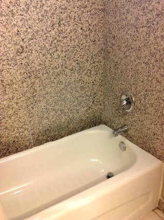 DoubleTree by Hilton Hotel Wilmington: Tub area- clean and new