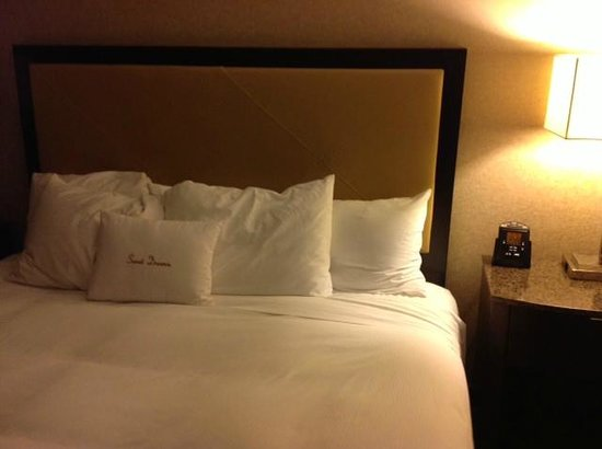 DoubleTree by Hilton Hotel Wilmington: Second day bed-maid did not care much about pillow arrangement
