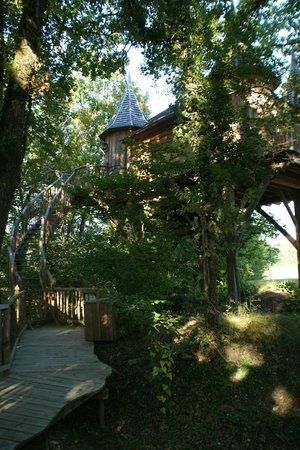 the tree house picture of chateaux dans les arbres bergerac tripadvisor. Black Bedroom Furniture Sets. Home Design Ideas