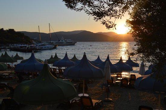 Rixos Premium Bodrum: пляж