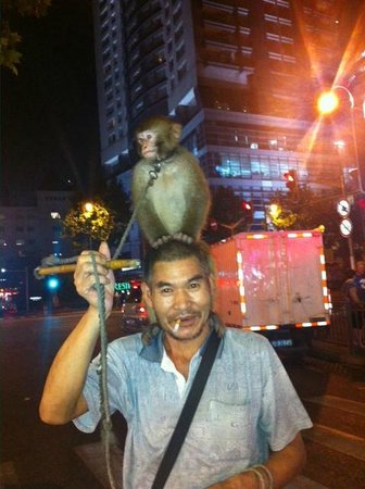UnTour Shanghai Food Tours: Shanghai monkey