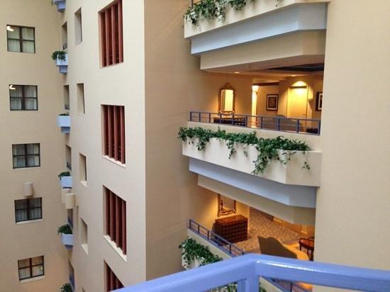 Cincinnatian Hotel: view