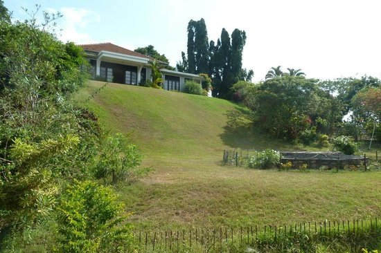 Castle Hill : Garten und Guesthouse