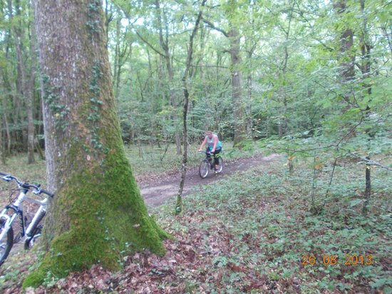 Siblu Villages - Domaine de Dugny: Cycling in the Forest by site