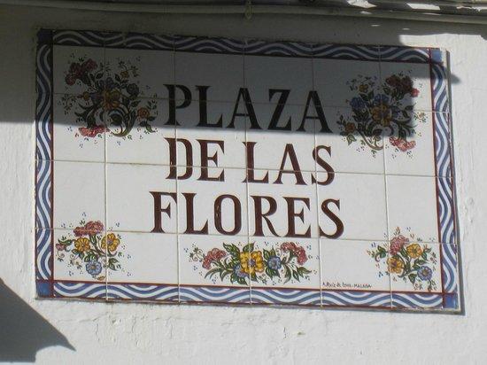 Hostal El Pilar : Plaza de las Flores