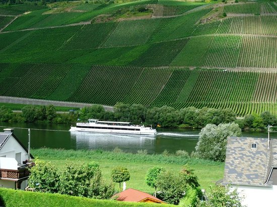 Hotel Heil: View over Mosel from our room