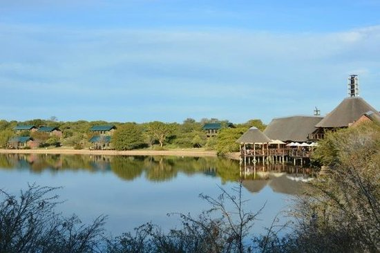 Buffelsdrift Game Lodge: Looking back at the lodge and tents