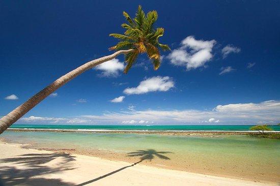 Carneiros Beach : lugar inesquecível