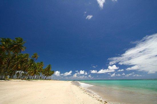 Carneiros Beach : espetáculo