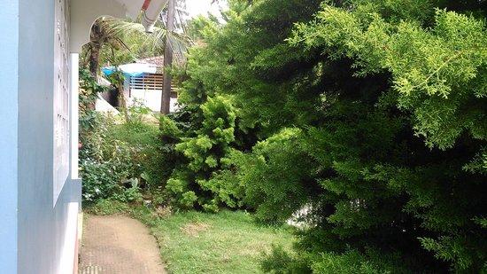 Rocky Nest HomeStay: Frontage