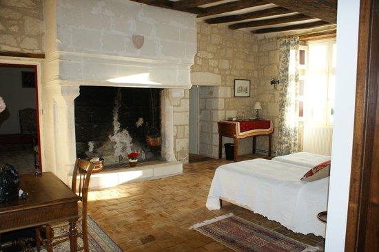 Manoir de l'Abbaye: La magnifique cheminée dans la chambre Alienor