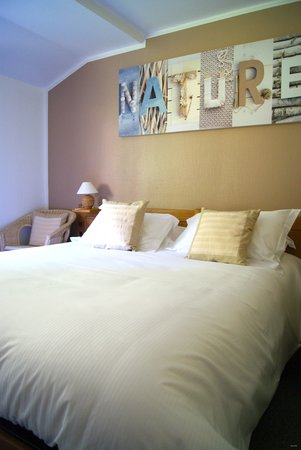 Hotel Le Tilleul Bleu: chambre standard
