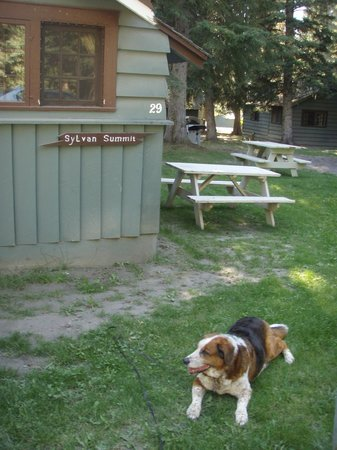 Rundle Cabins: all good