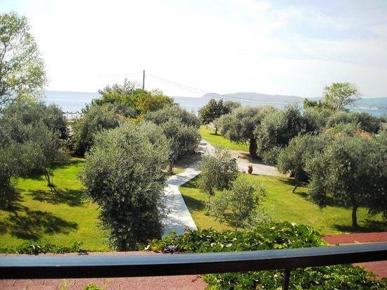 Sissy's Villas: the garden