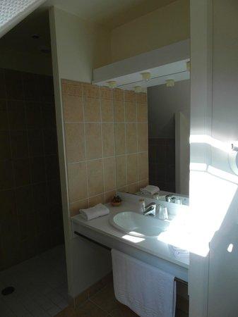 Domaine de l'Hostreiere: Il bagno con la doccia