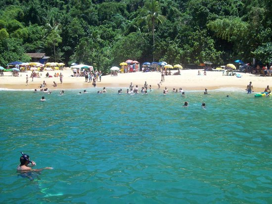 Cedro Beach: vista da praia pela escuna