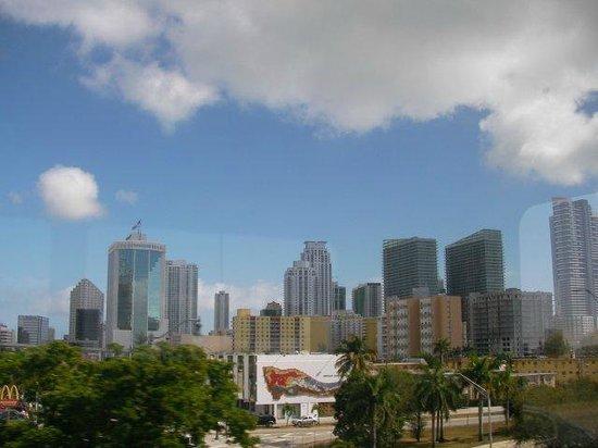 Miami Tour Company : Miami skyline View from Calle 8