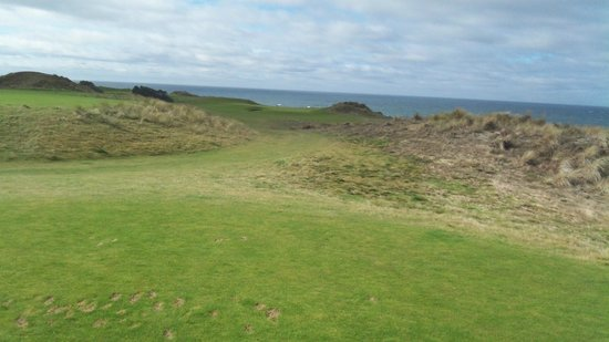 Bandon Dunes Golf Resort : One of the tees on Bandon Dunes