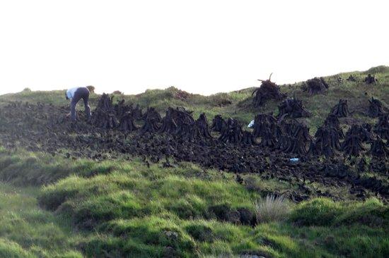 Eden Villa: turf farming - Ox Mountains