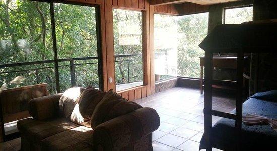 Forest Dreams Hotel : Vista de la habitación 103 y del balcón